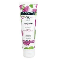 Shampooing détox fraîcheur BIO - Cheveux Gras - 250ml - COSLYS