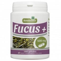Renaissance-Bio Fucus  - 180 Gelules