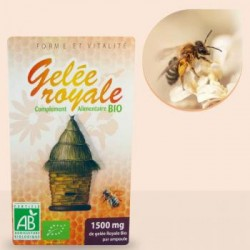 GELÉE ROYALE BIO 20 AMPOULES 1500MG 10ML