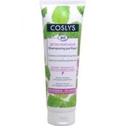COSLYS  Shampooing purifiant cheveux à tendance grasse 250ML