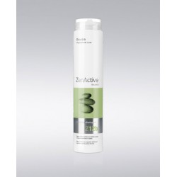 ERAYBA Zen Active Z12b cleansing shampoo 1L